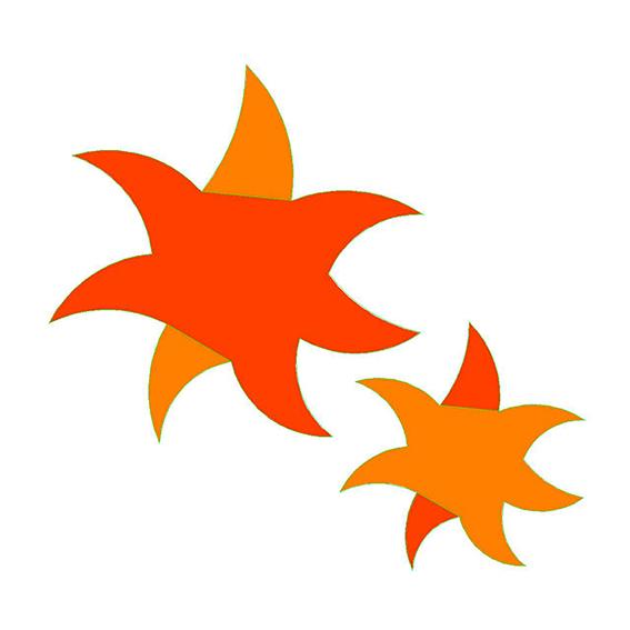 fustella stella marina